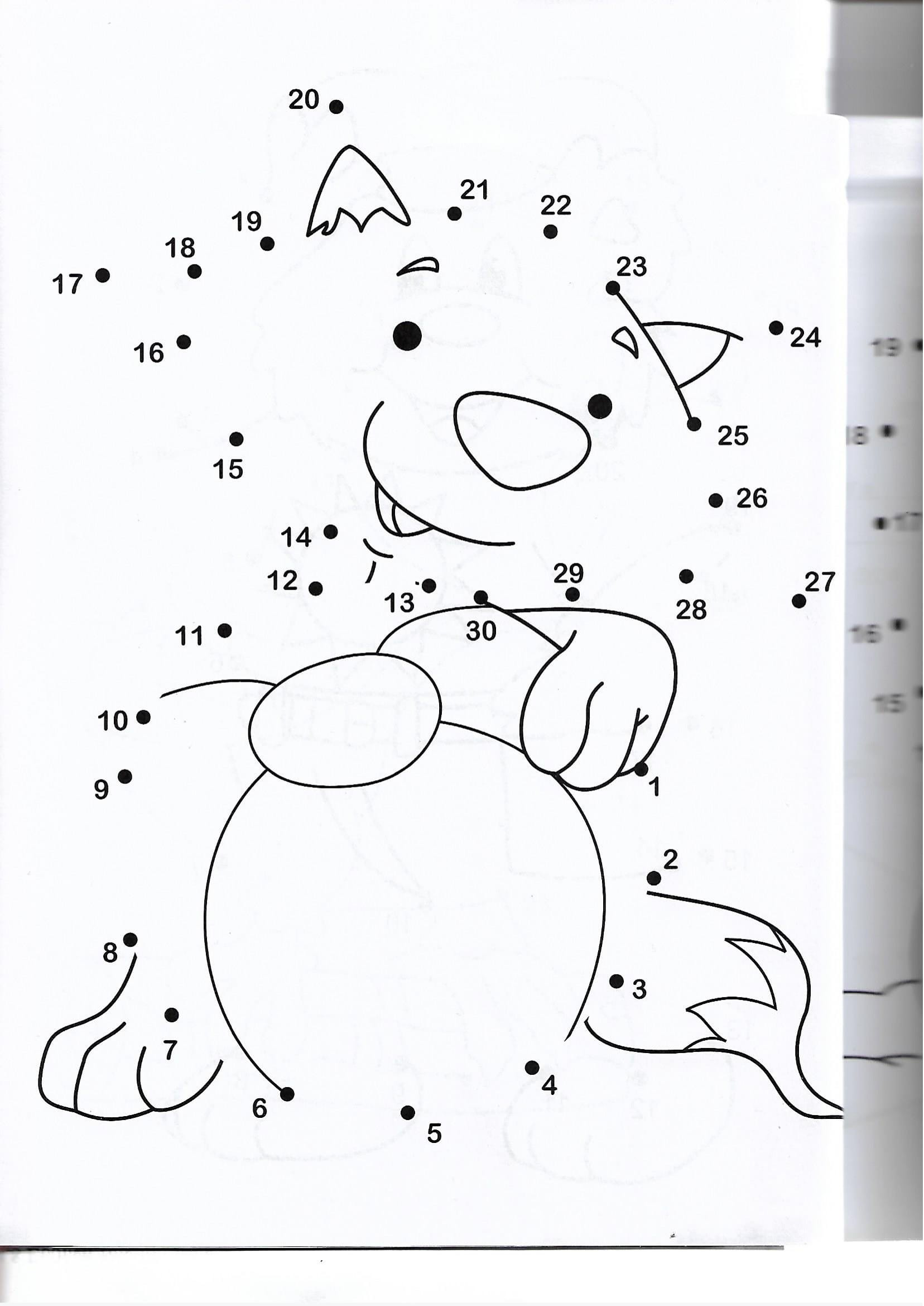 racoon animal printable dot to dot – connect the dots numbers 20 20 ...